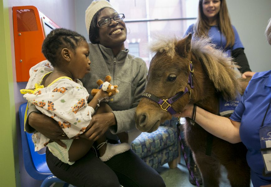 child patient being visited by a miniature horse